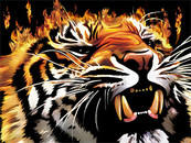 Flame Tiger by Sajad