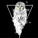 Electric Nose Owl by PenGrapH