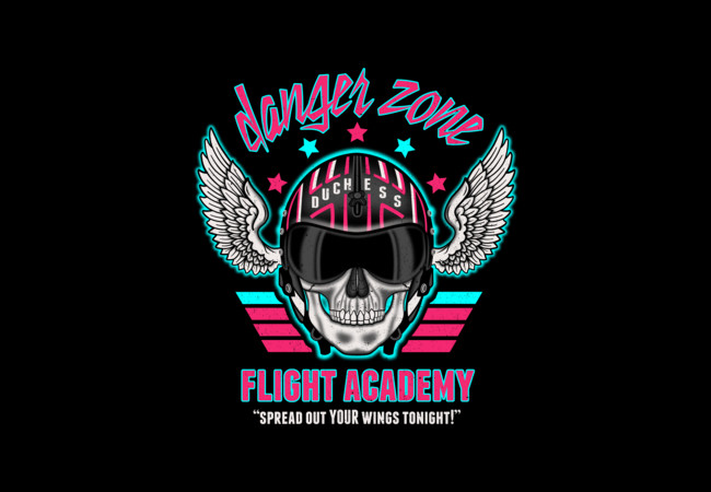 Danger Zone Flight Academy  Artwork