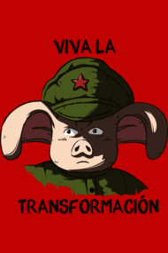 Viva la transforamtion