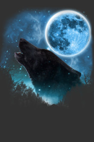 Black Wolfs Skylight